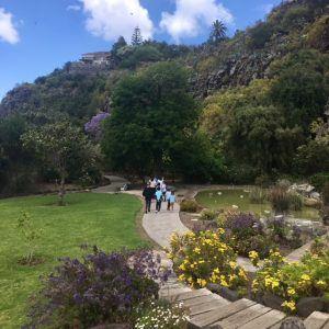 Kasvitieteellinen puutarha Las Palmasissa.