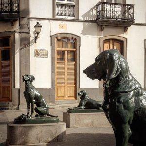 Koirapatsaat Santa Anan aukiolla Las Palmasissa