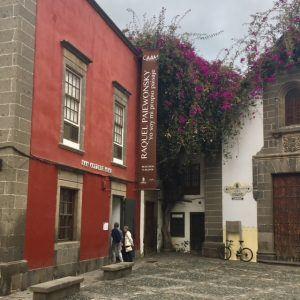 Museot Las Palmas: Modernin taiteen museo CAAM