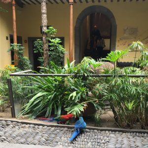 Casa de Colon on kiva museo kaiken ikäisille.