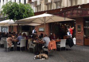 Espanjalaista ja kanarialaista ruokaa Las Palmasissa