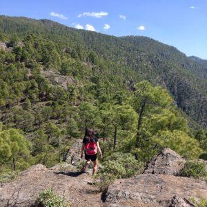 Patikointi Gran Canaria Tamadaba
