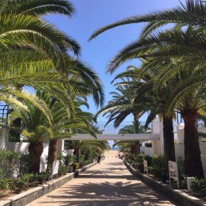 Kävelytie hiekkadyyneille Hotel Riu Palace Maspalomasin kautta.