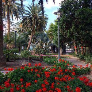 Parque Doramas on kaunis puisto keskellä Las Palmasia.